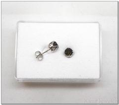 Zilveren ronde rookkwarts oorstekers dichte zetting
