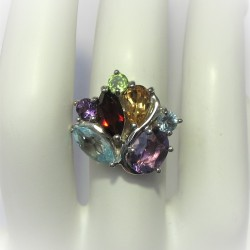 Elegante multicolourring